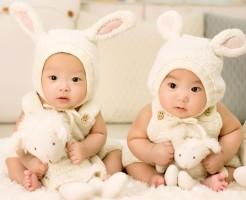 出産内祝い人気